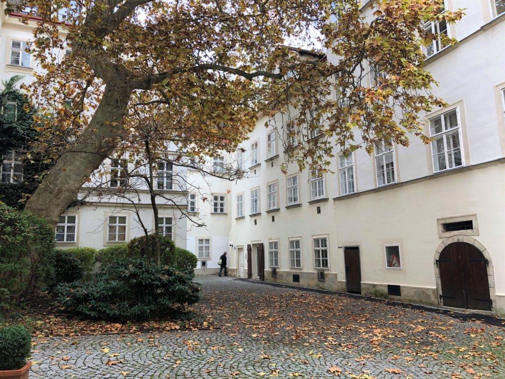 紅葉した大木があるウィーンの中庭