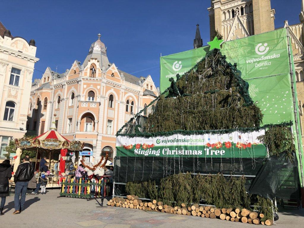 昼のSinging Christmas Treeと建物