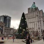 大きなクリスマスツリーと広場