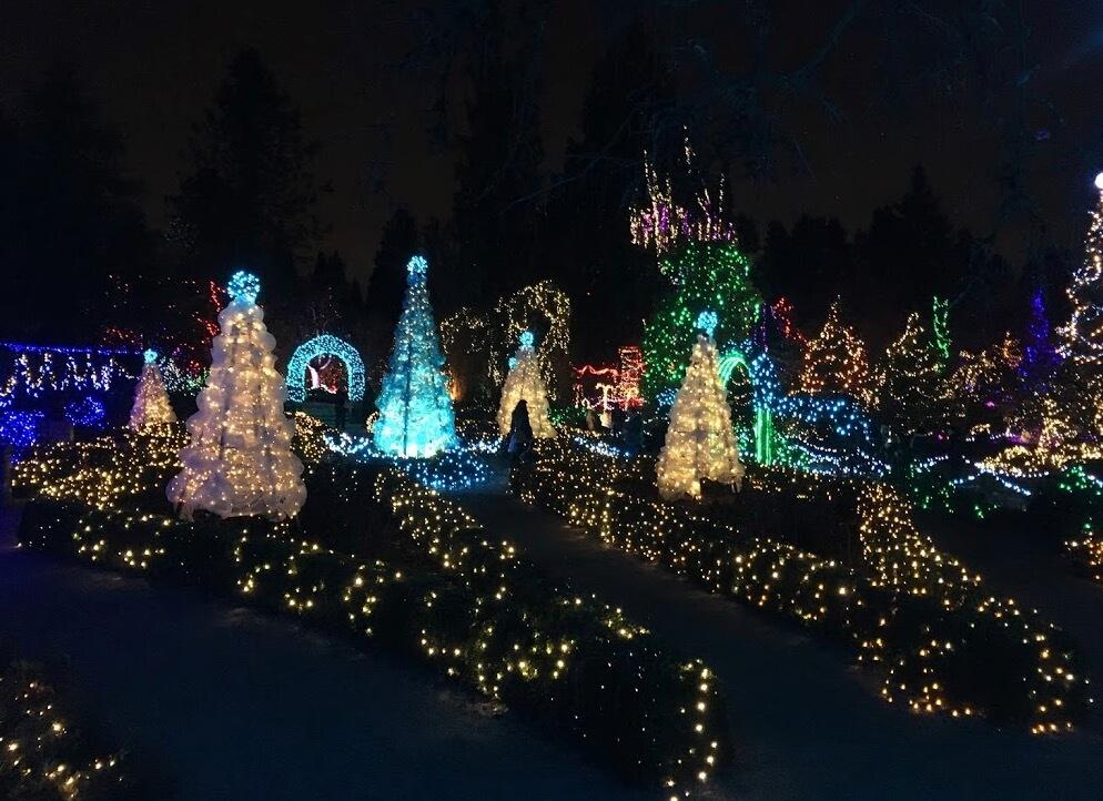 ヴァンデューセン植物園のクリスマスイルミネーション