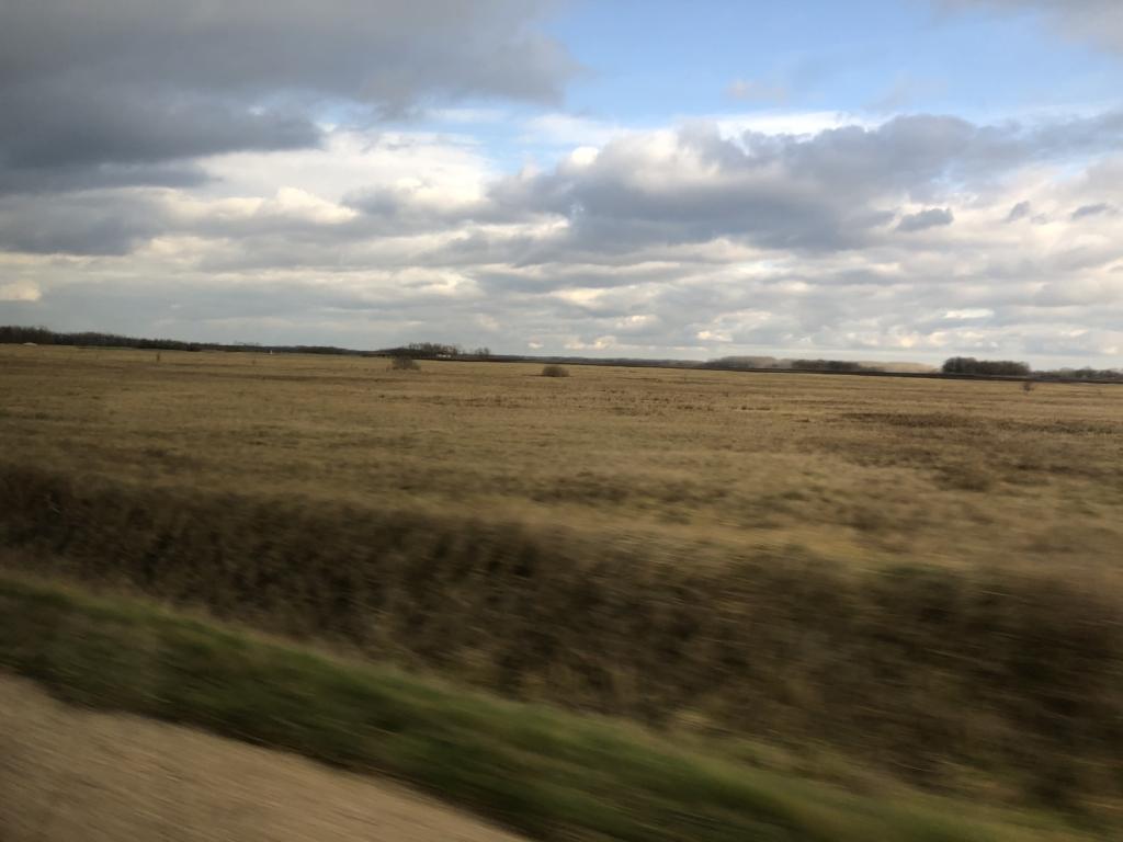 セルビアからハンガリーへ行く道路の畑風景