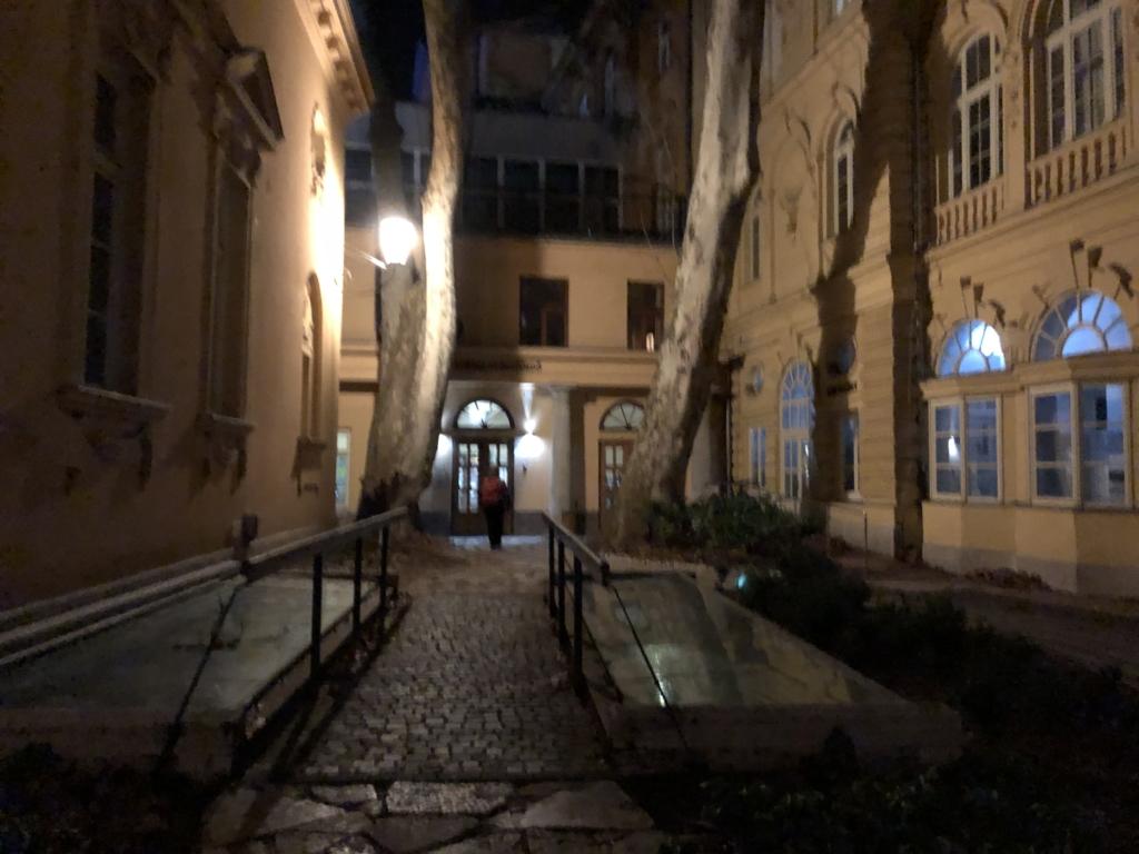 ブダペスト、ルカーチ温泉St. Lukács Thermal Bathsの建物入り口に入る人