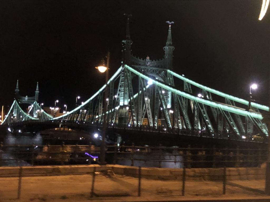 ブダペストの自由橋の夜景