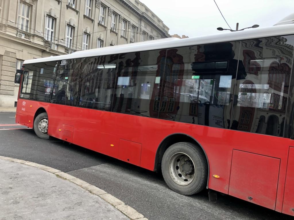 セルビア、ベオグラードのバス