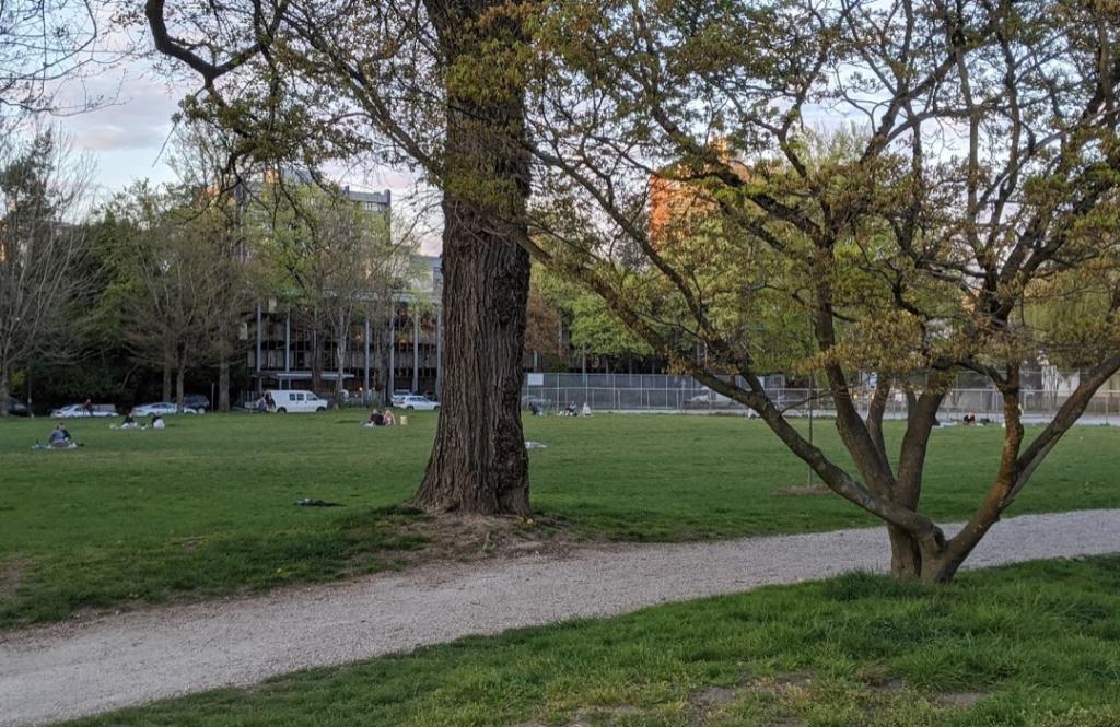 公園に人が集まっている様子